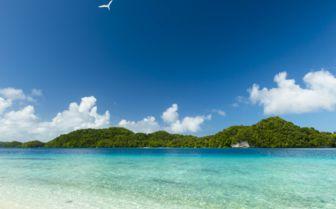 Palau babeldoab beach
