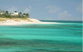 Bimini coast, Bahamas