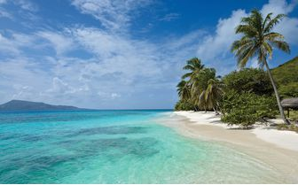 An image of Petit St Vincent Beach
