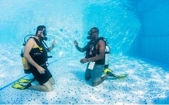 manta_diving_lesson