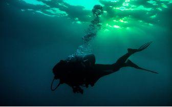 manta_diver