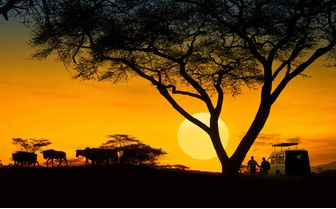 Tanzania at sunset