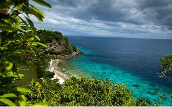 Apo Island Coastline