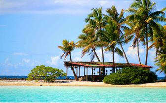 Rangiroa Atoll Beach Hut