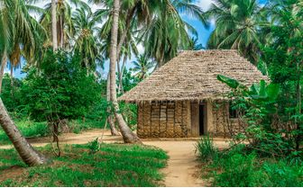 Tanzanian Hut
