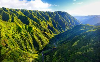 Hawaii Green Scenery