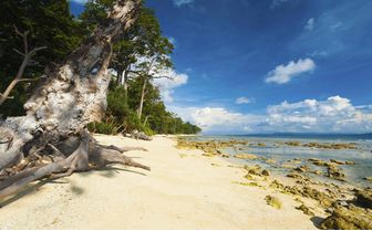 Beach on the Andaman Islands