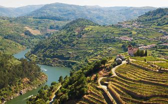 Aerial view of the Douro Valley