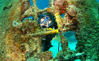 Picture of diving wrecks off Turks and Caicos Aggressor II