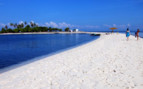 Picture of the Beach at Amorita Resort
