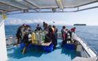 Picture of Diving at Tawali Resort
