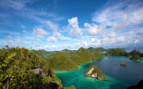 Picture of the Tiger Blue in Raja Ampat