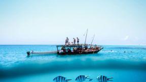 Fishing Boat, Underwater, Tanzania