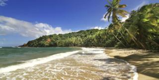 Dominica Beach