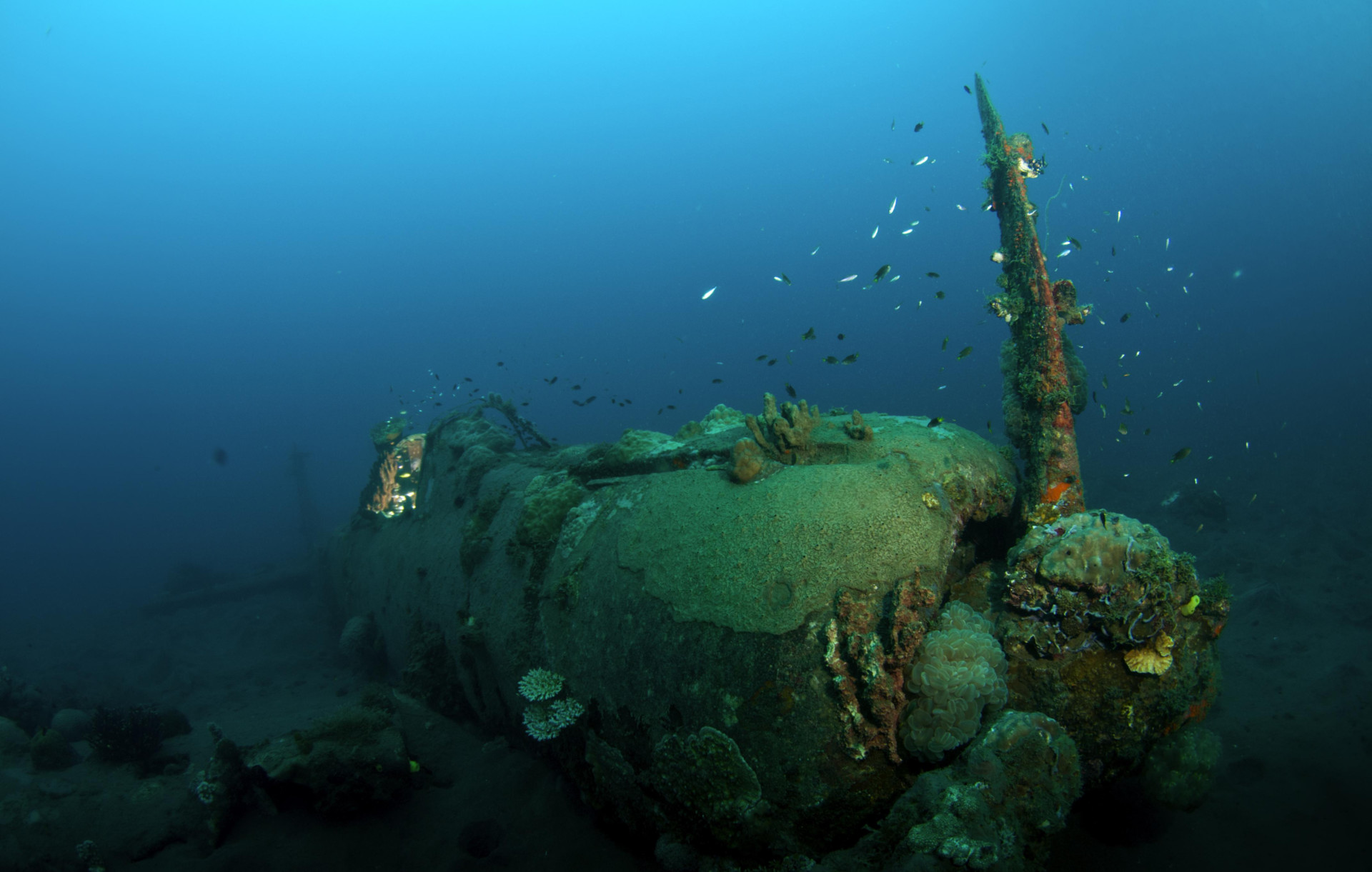Wreck Diving Around The World Original Diving Blog