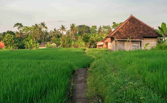 Touring the local villages of Ubud