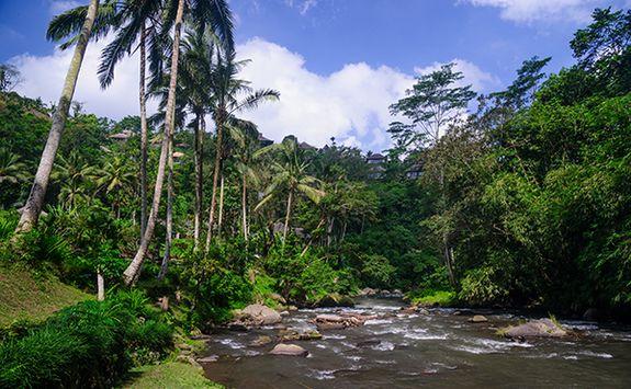 Ayung River Bali