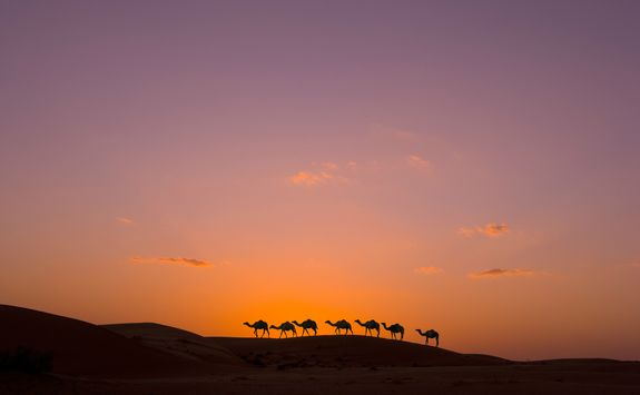 sunset over the oman desert