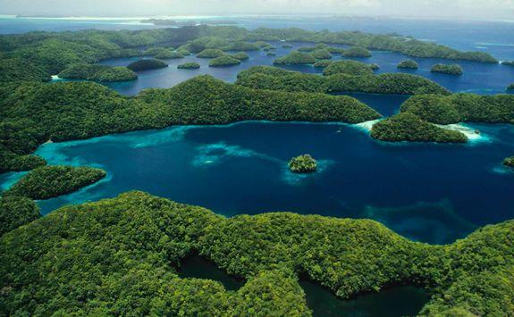 rock islands jellyfish lake
