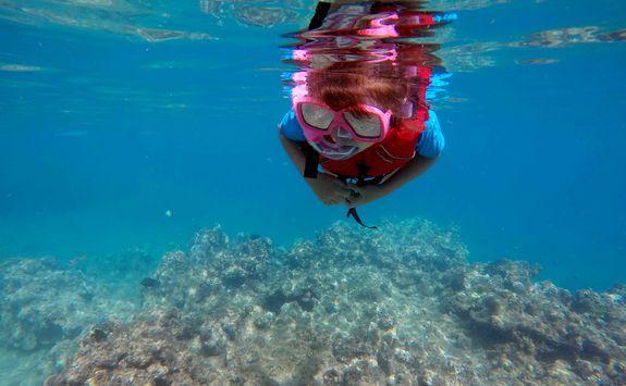 child snorkeling dive fiji