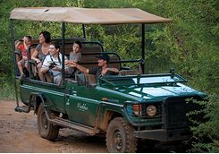family game drive africa