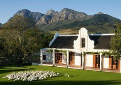 Babylonstoren vineyard South Africa