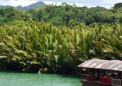 loboc river boat