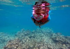child snorkeling dive fiji