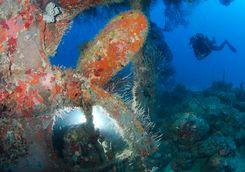 shakem shipwreck