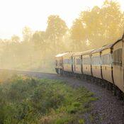 thai-train