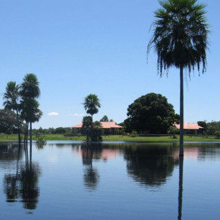 Fazenda Barranco Alto