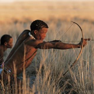 Kalahari Bushmen Safaris