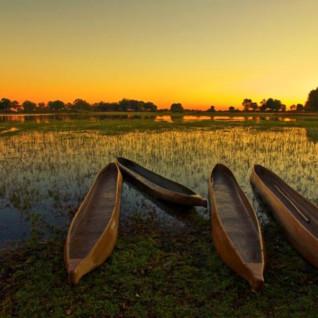 Botswana Boat and Canoe Safaris