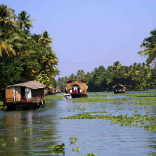 Houseboats on the backwaters