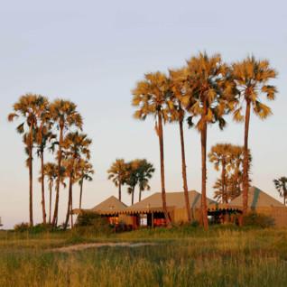 Jacks Camp, luxury camp in Botswana, Africa