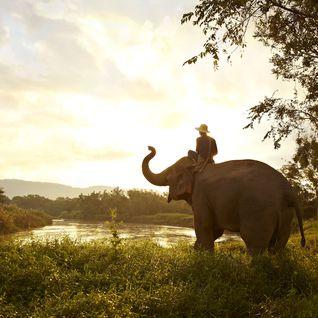 A Christmas getaway to Thailand