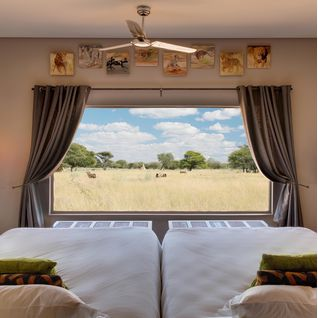 plains_camp_view_from_bed