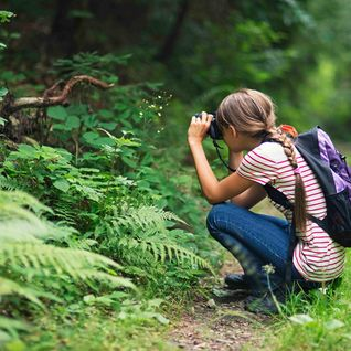 young girl looking for wildlife