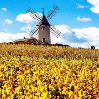 France windmill