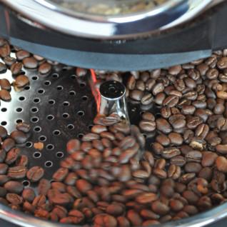 Visit a Coffee Hacienda
