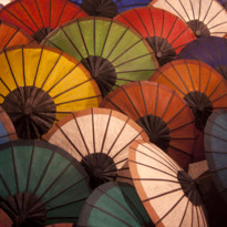 Colourful Parasols