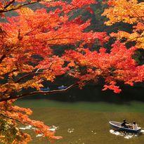 Rowing boat, Kyoto