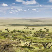 tanzania land