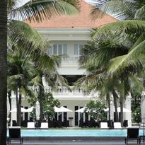 The pool surrounded by palms
