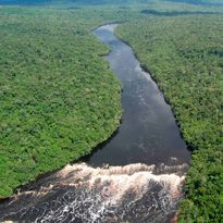 An aerial view of Brazil's Amazon