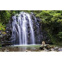 Falling water in Daintree forest