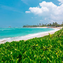 Sri Lanka ocean shore