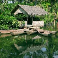 Riverside hut on the Mekong Delta