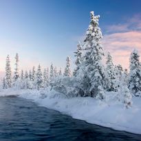 Swedish Arctic