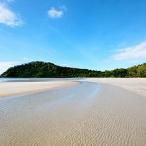 View of the beach and greenery at Cape Tribulation